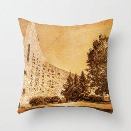 Rustic Exposure Throw Pillow