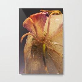 Hong Kong Orchid Tree #41 Metal Print