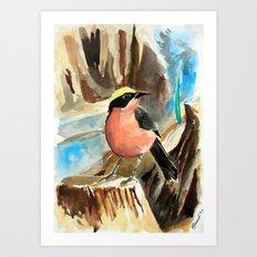 Little Birds 7/30 Art Print