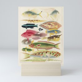 Great Barrier Reef Fish Illustration by by William Saville-Kent, 1893 Mini Art Print