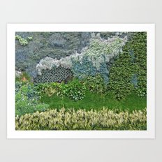 Vertical Garden Art Print