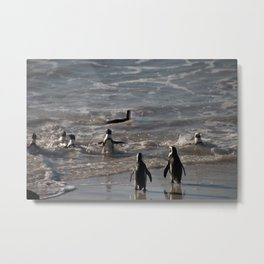 Into the Water Metal Print