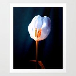 The Inner Light Art Print