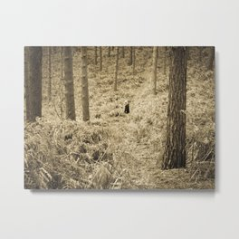 Peace in the forest Metal Print