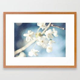 Flowers in the Sky Framed Art Print