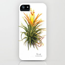 Tillandsia Druid Air Plant Watercolors iPhone Case