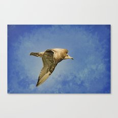 Into The Blue Canvas Print