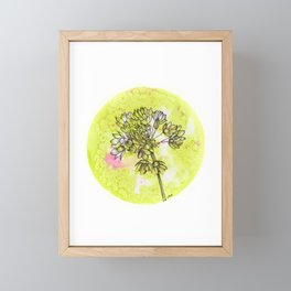 Allium on Green with Pink Framed Mini Art Print