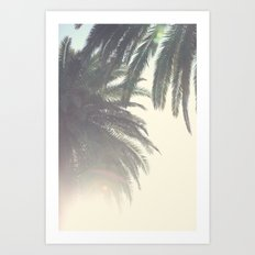 Sunset Palm Tree Art Print