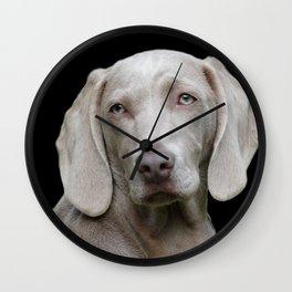 Weimaraner Dog Wall Clock
