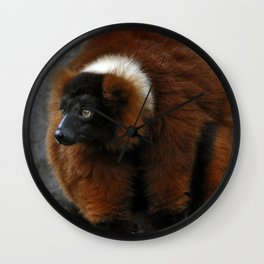 Red Ruffed Lemur Wall Clock