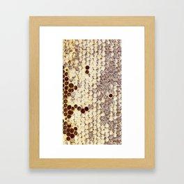 closed honeycombs Framed Art Print