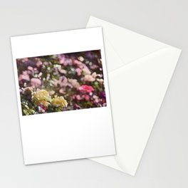 Rose 209 Stationery Cards