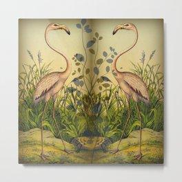 2 Flamingos  Metal Print