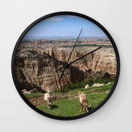 Bighorn Sheep At Sage Creek Wall Clock