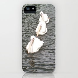 Three White Pelicans Swimming in a Row iPhone Case