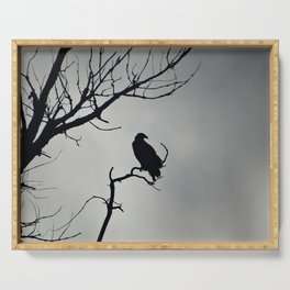 Young Bald Eagle Silhouette Serving Tray