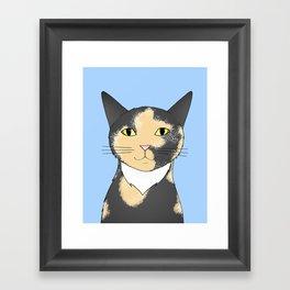 Taz Framed Art Print