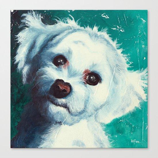 Maltese dog - Pelusa - by LiliFlore Canvas Print