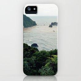 New Zealand Coast iPhone Case