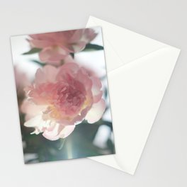 PIVOINE Stationery Cards