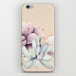 Trendy Apricot + Mint Succulents iPhone Skin