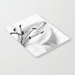 Black and White Floral Nature Photograph High-key Lily Notebook