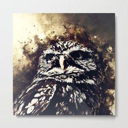owl portrait 5 wsfn Metal Print
