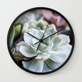 Pastel Succulents Natural Beauty Wall Clock