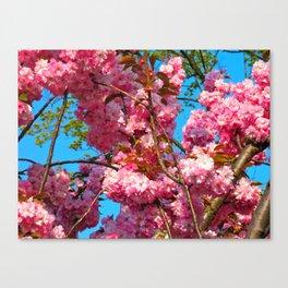 Prague Spring #2 Canvas Print