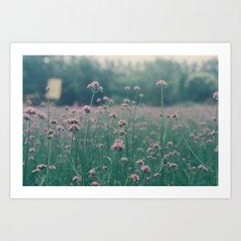 Faded pink  Art Print