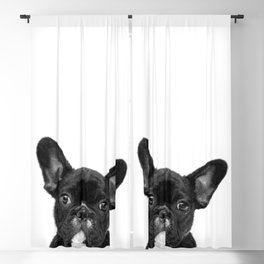 Black and White French Bulldog Blackout Curtain