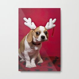 Happy Holiderps! Metal Print