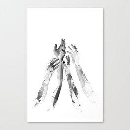 E_ Canvas Print