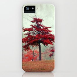 rosso iPhone Case
