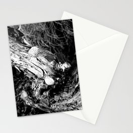 Old Joints Stationery Cards