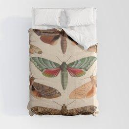 Vintage Natural History Moths Comforters