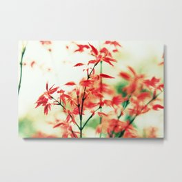 Japanese things 0343 Metal Print
