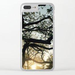 Laurelton Morning Clear iPhone Case