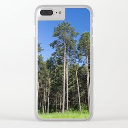 pine trees in the forest Clear iPhone Case