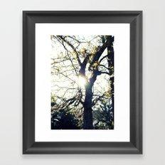 Golden Moss Framed Art Print