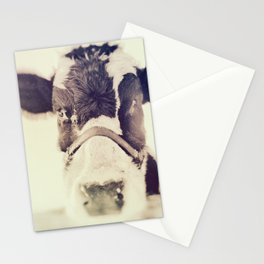 The Cow Stationery Cards