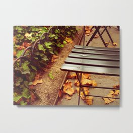 bryant park cafe chair Metal Print