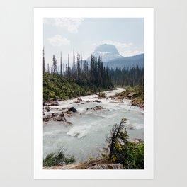 whitewater. Art Print