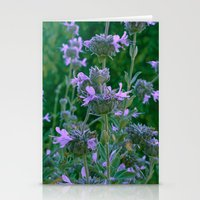 cleveland Stationery Cards featuring Cleveland Sage by Toni