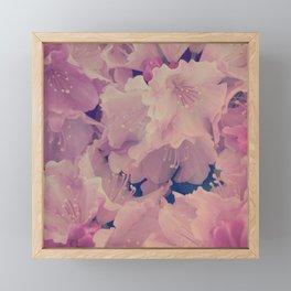 Serenity Floral II Framed Mini Art Print