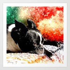 Boston Terrier (Jake) Art Print