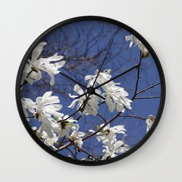 Star filled sky (Star Magnolia flowers!)      Edit Wall Clock