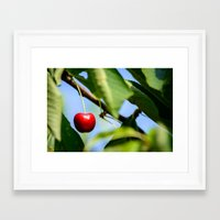 cherry Framed Art Prints featuring cherry by hannes cmarits (hannes61)