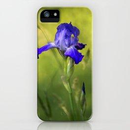 Violet Iris Flower iPhone Case